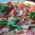 Torta salata con pomodori, mozzarella e zucchine